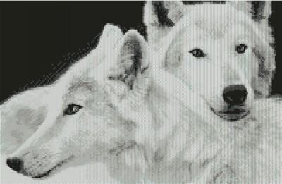 Схема для вышивки волк белый