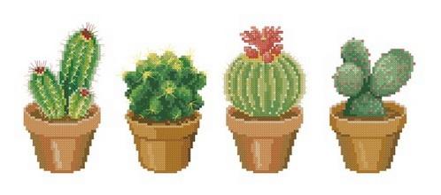 Схема для вышивания четырех видов цветущих кактусов.  Скачать схему для вышивания бесплатно.