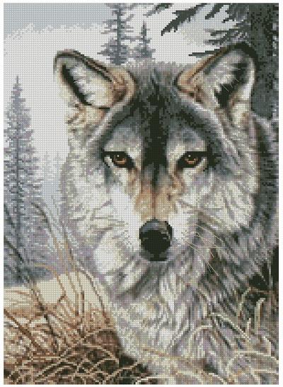 Разве этот волк вам не напоминает, того волка из Нэнси Дрю.  Он вышит крестом.  А вышивка крестом вид рукоделия.