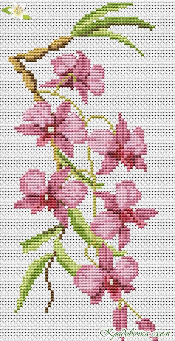 Вышивки схемы с орхидеями 52